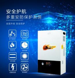 岚帝尔 各种型号 电采暖炉 电锅炉 电暖器 电暖气 墙暖画