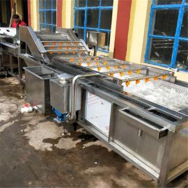 连续式果蔬清洗机 小型龙宫果清洗线