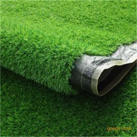 休闲草坪、景观草坪、门球场草坪、足球场草坪,以及运动草