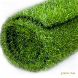 江瀚1.0cm 2.0cm 人工草坪 绿化草坪 景观草坪 绿化草坪