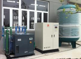 神岳净化工业制氧机SYPO-10小型制氧机