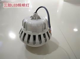 新黎明科创BZD180-100-50W 防爆免维护led照明灯 led防爆灯100W