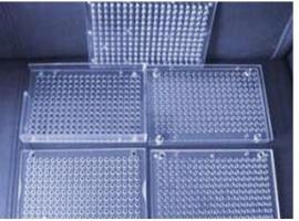 胶囊灌装板 小型胶囊填充板