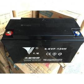 铅酸蓄电池天能12v100ah免维护正品包邮