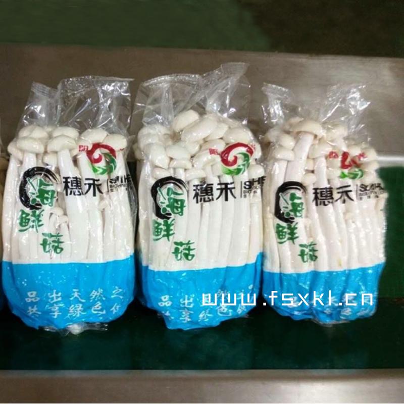 枕式菌菇包装机 新科力带托盒装枕式菌菇自动包装机 实力商家