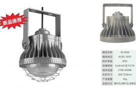 NFE568-L50WLED防爆平台灯50W雷士防爆平台灯NFE568-L70W同款