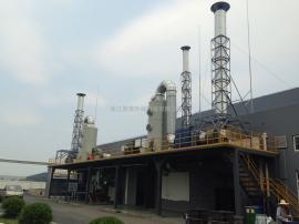 酸雾废气 VOC有机废气 PP喷淋塔 废气净化装置 喷漆废气收集