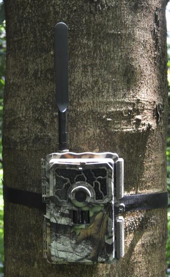 SY-999M千里拍4G物联网云存储GPS定位无线红外夜视自动监测仪