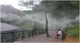 雾森系统人工造雾喷淋喷灌设备
