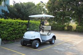 2座高尔夫球车,2座电动高尔夫球车
