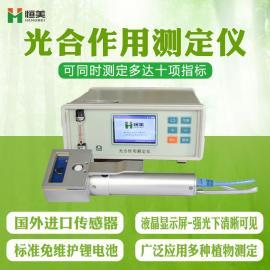 恒美 光合作用测定仪器 HM-GH10