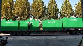 wsz-0.5医院污水处理设备 医疗废水处理装置